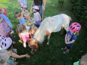 Pony im Kindergarten zwei